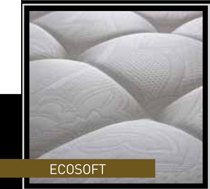 Ecosoft a Melissano
