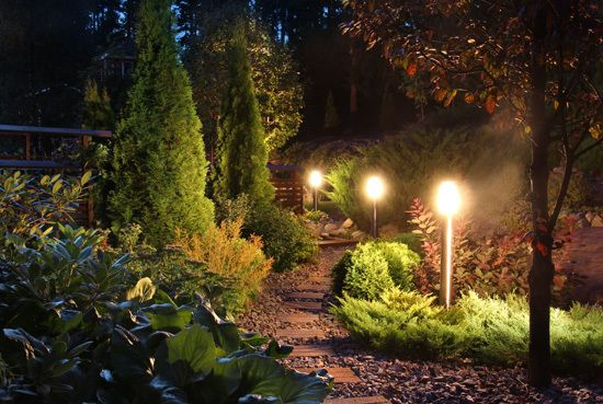 Landscape Lighting Wired & Installed