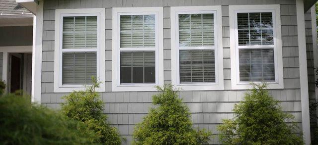 Nescor Windows