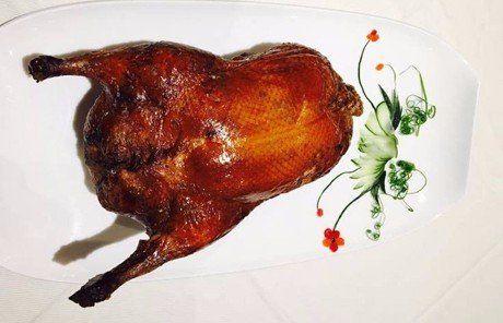 pollo alla griglia- bologna