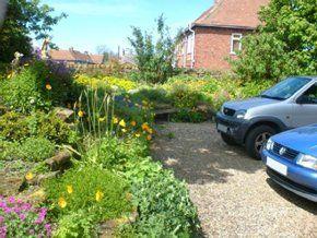 Why Choose Cottage Garden Nursery