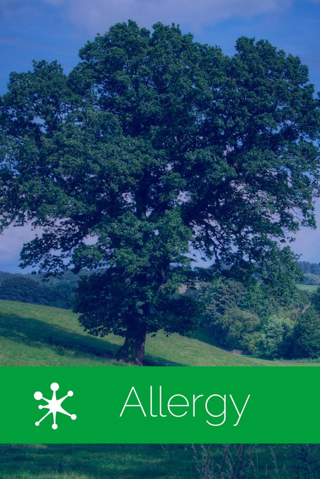 Allergy Treatments Buffalo, NY