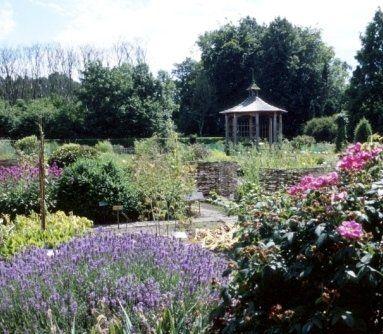 abbattimento alberi, giardinieri, manutenzione periodica giardini