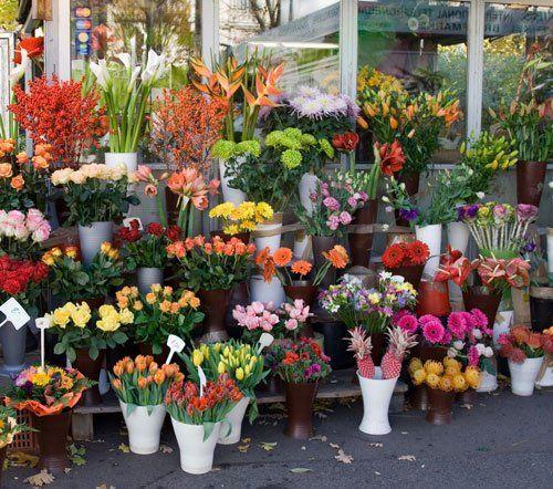 assortimento di fiori esposti al di fuori del negozio