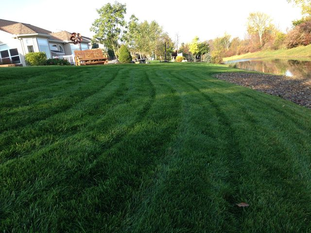 Lawn Aeration & Top Dressing