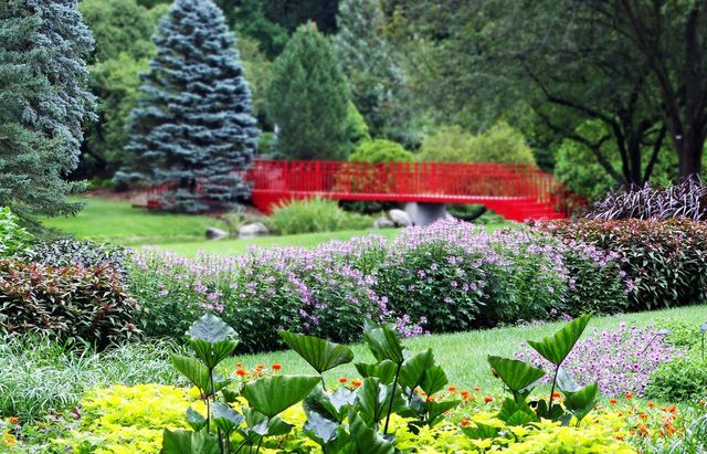 Plan Your Visit To Dow Gardens