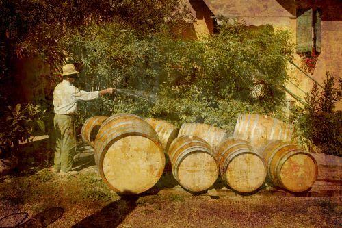 Bagnando con la manichetta i barili che devono contenere il vino