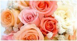 delle rose di color arancione, rosa e bianco