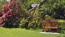 Articoli per il giardinaggio -  Pratesi Edilizia e giardino - Faella