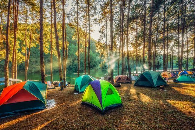 delle tende da campeggio in un bosco vicino al fiume