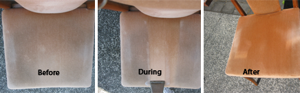 Upholstery cleaning as part of a curtain cleaning package in Tauranga