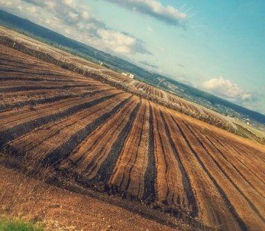 contoterzista agricolo