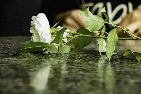 una rosa bianca su un piano di marmo