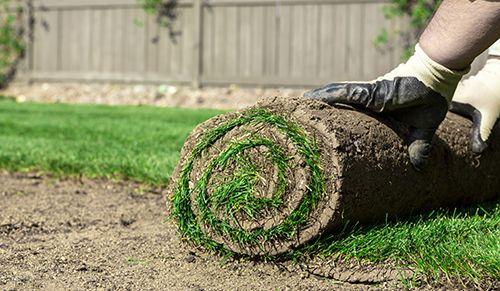 Sod lawn installation services in Centralia, MO