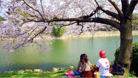 This is a photo of a woman and man having a picnic and meditating at a pond in Japan. Martin Acton's Aikido Institute