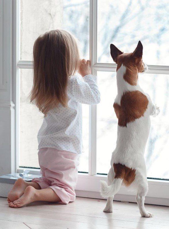 una bambina e un cane appoggiati al vetro