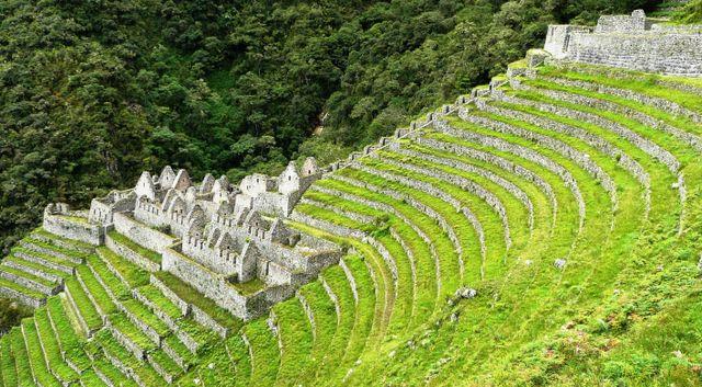 Winayhuayna