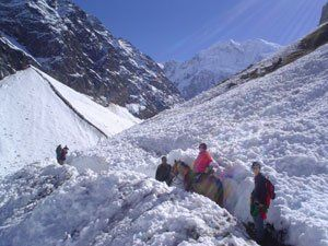 Trail to the Salkantay Pass
