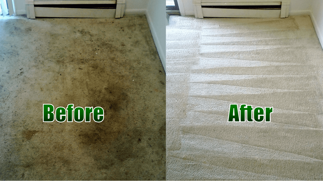 Image result for f cheap carpet cleaning services
