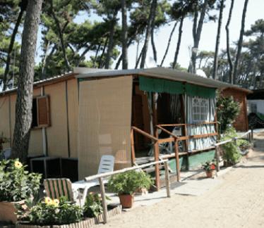 Camping Internazionale, Marina di Pisa, vacanze al mare, ferie al mare, camping attrezzato, camping per famiglie, servizi per disabili