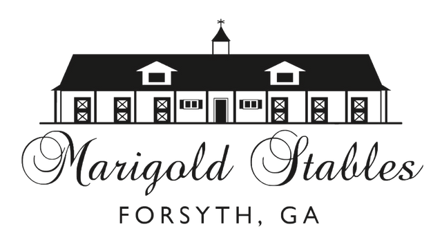 Marigold Stables | Horse-riding, Boarding, & More