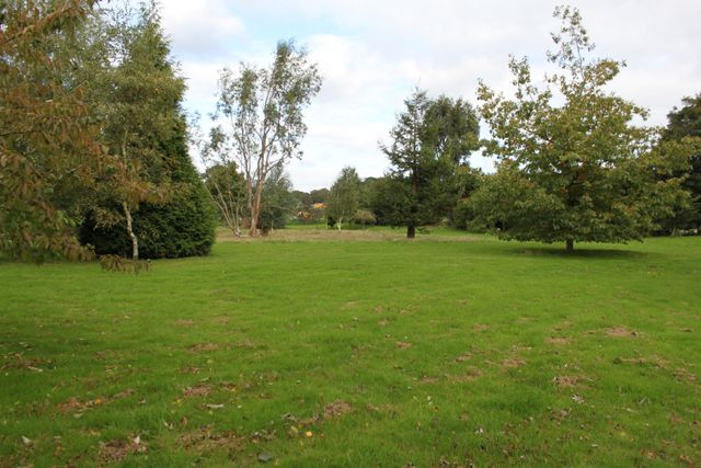Large private walking area outside grass space