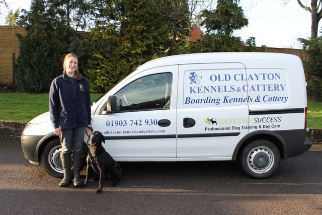 Pets van and expert to provide best transportation services