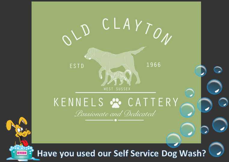 Old clayton kennels kennel storrington solutioingenieria Choice Image