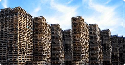 Piles and piles of pallets in a yard