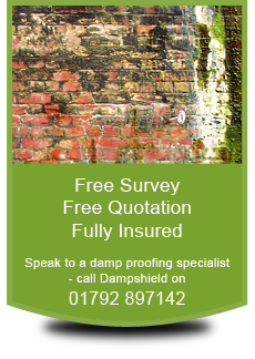 Rising damp - Swansea, Gower, Neath and Port Talbot in South Wales - Dampshield - damp