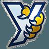 York Revolution Professional Baseball - York, PA