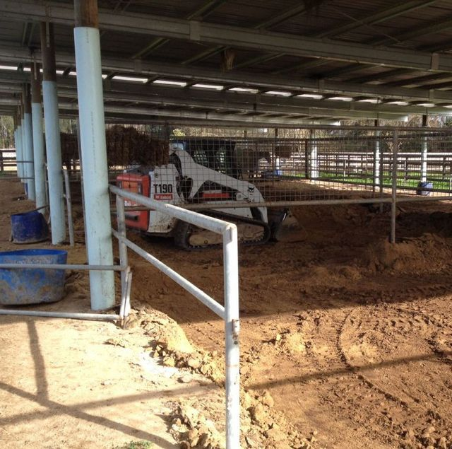 Quality earthmoving services in Hamilton