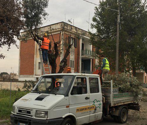 manutenzione arredi urbani