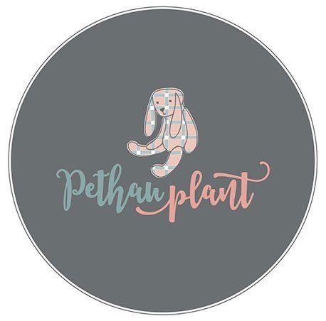 pethau plant logo