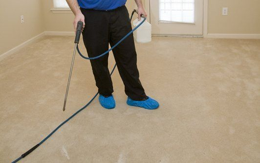 Carpet cleaning employee cleaning a carpet