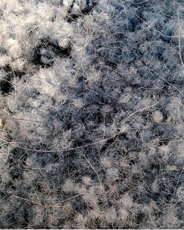 Close-up of fibers on a dirty carpet
