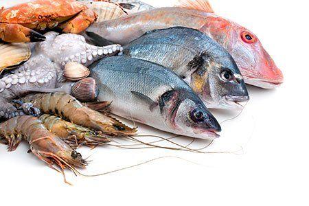 Pescato fresco di pesci e altri frutti di mare