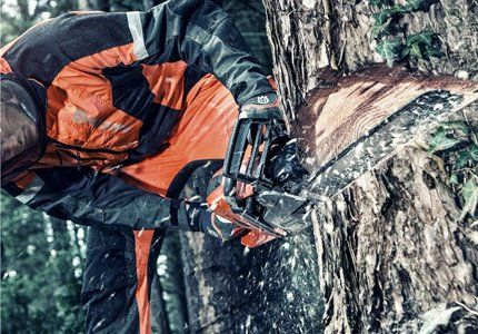 A man cutting a tree with a chainsaw