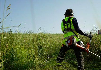 A man cutting wild grass with a strimmer