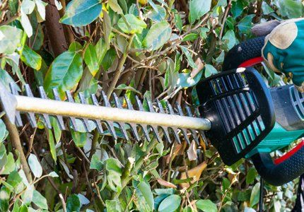 A close up of a strimmer