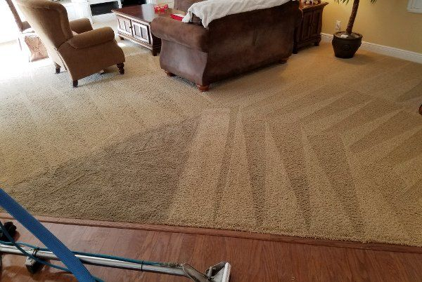 Carpet Amp Upholstery Cleaning New Port Richey Fl Steve
