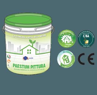 Pastum Pittura