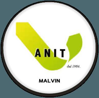 Socio Anit