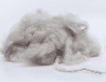 Pure virgin wool