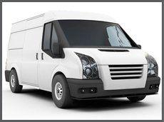 White and black van