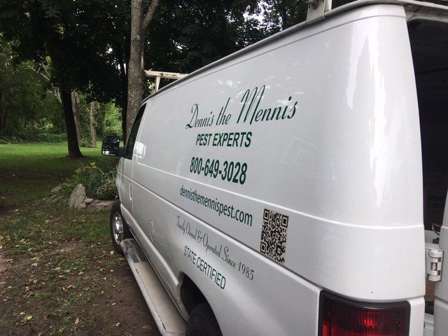 Rodent Control | Lynn, MA | Dennis the Mennis Pest Control