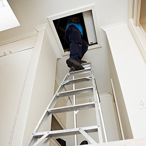 A ladder leading to a loft