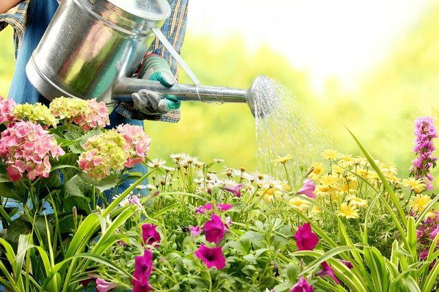 donna annaffia piante fiorite