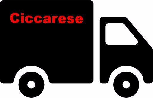 logo di un camion nero su uno sfondo bianco