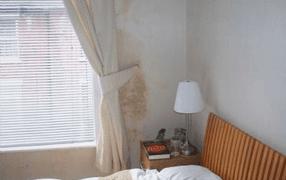 home interior survey